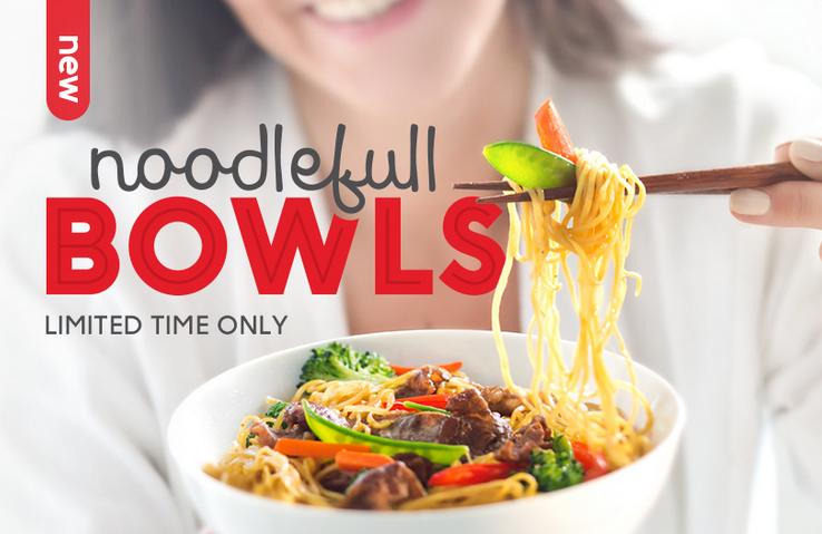 EDO JAPAN Noodlefull Bowl