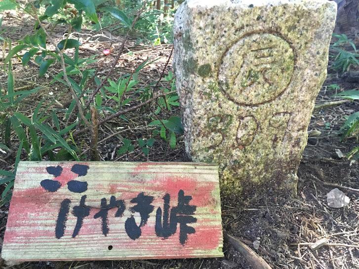 2017丹波高山/けやき峠