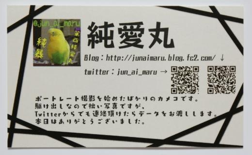 コスサミ 名刺 02