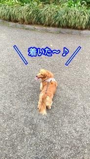 着いた~!