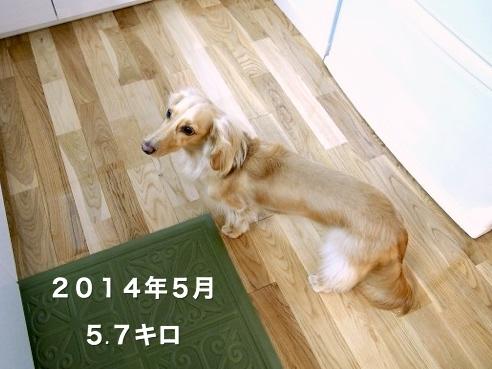2017902202_Fotor.jpg
