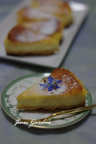 チーズケーキ170816