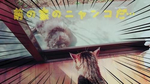 17-03-10-23-16-20-980_deco.jpg