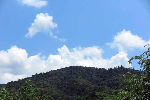 170719三輪山