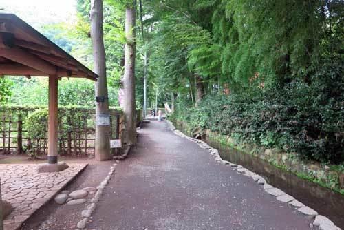 170804お鷹の道