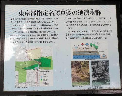 170804真姿の池湧水群説明
