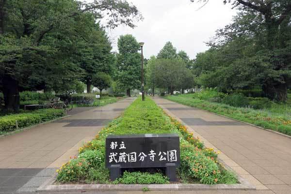 170804武蔵国分寺公園