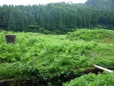 杣山城_居館土塁