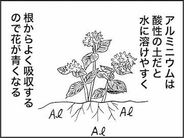 kfc00927-5