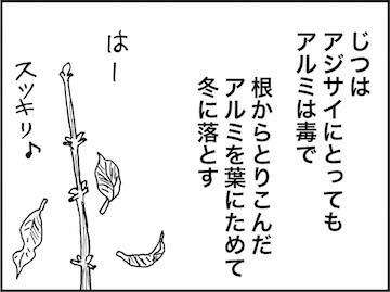 kfc00927-6