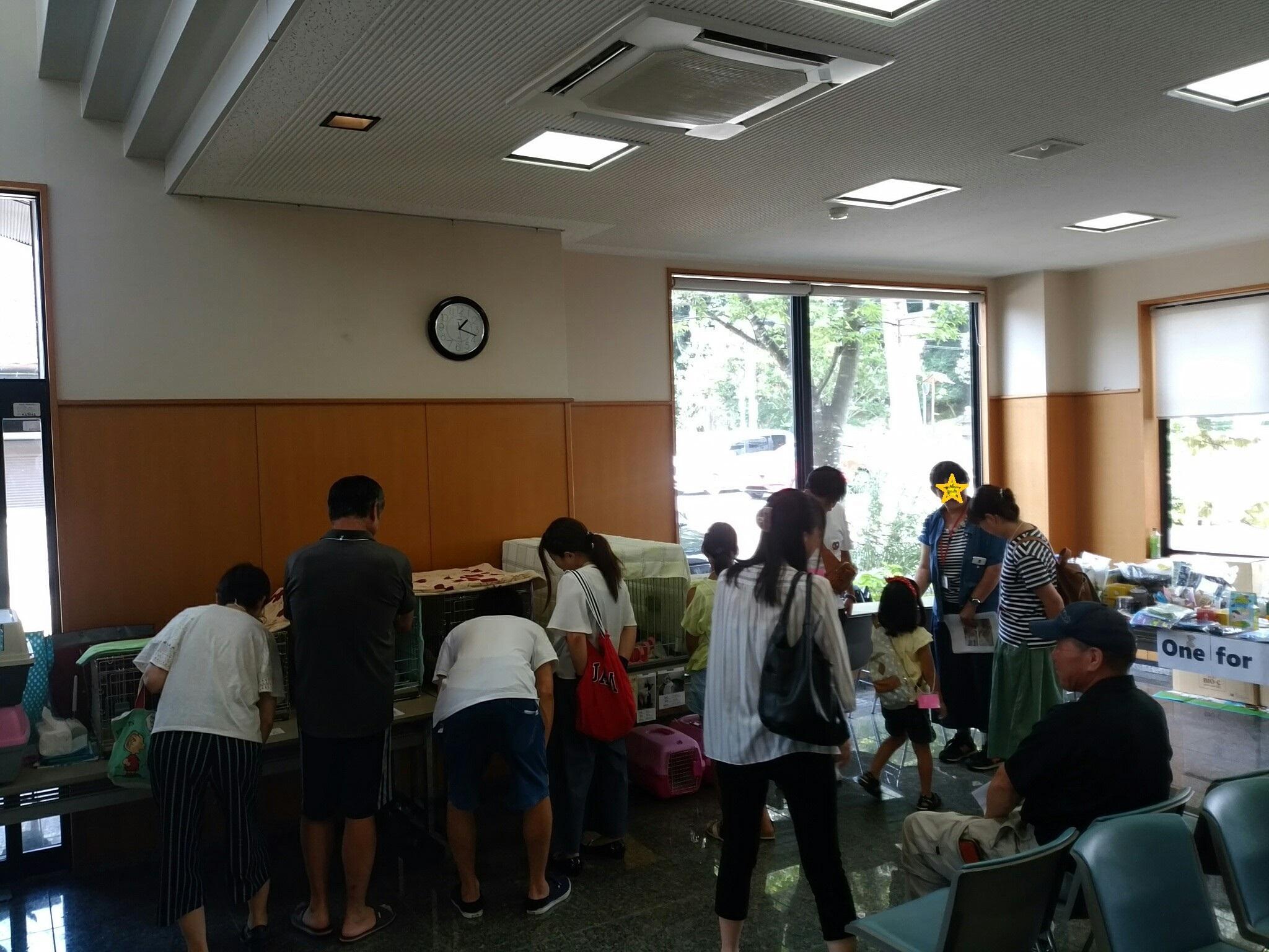 2017 8月20日譲渡会 支援物資_43