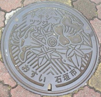島蔵元跡 サキシマツツジ