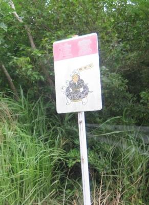 石垣島 カメの注意看板