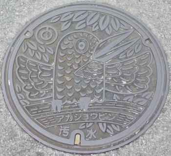 石垣島 アカショウビンマンホール