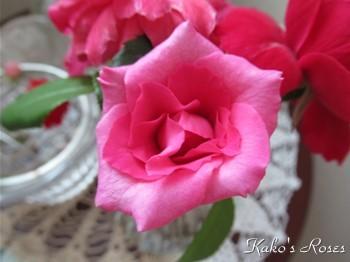 s-IMG_0359k30.jpg