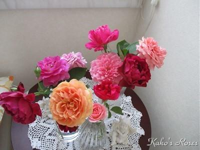s-IMG_5728k30.jpg