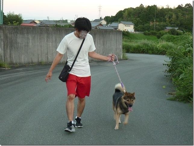 20170813お盆朝散歩夕散歩-14