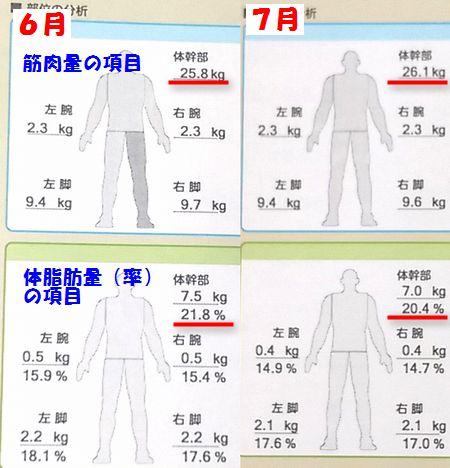 2_7月筋肉量体脂肪量
