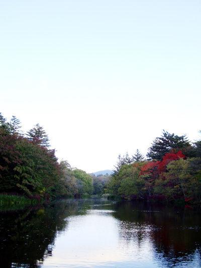 20081019-0.jpg