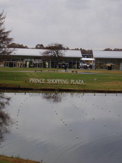 20081117-1.jpg