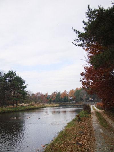 20081119-2.jpg
