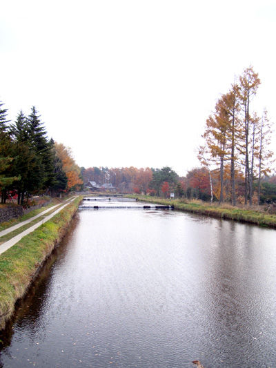 20081119-5.jpg