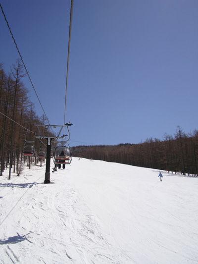 20090329-2.jpg