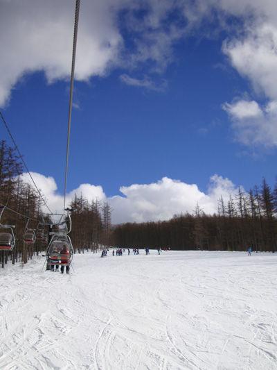 20100124-2.jpg