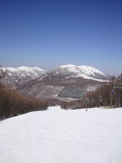20100328-1.jpg
