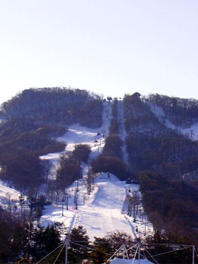 20100330-4.jpg