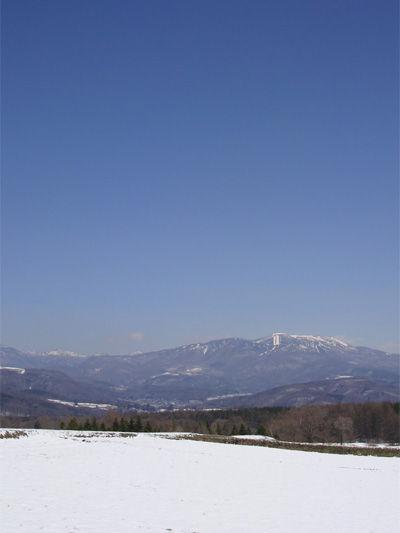 20100418-2.jpg