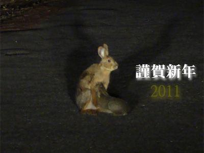20110101-1.jpg.jpg