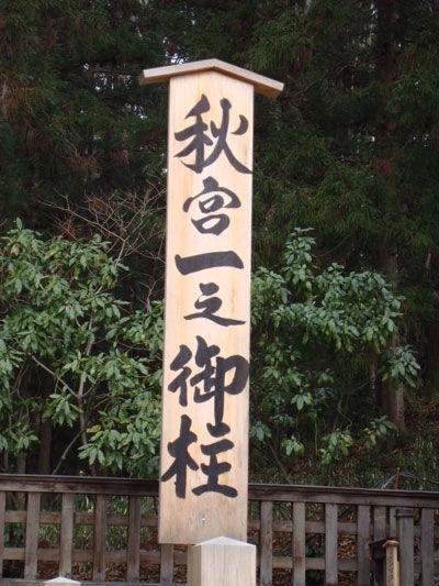 20110109-5.jpg