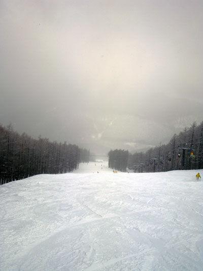 20110125-1.jpg