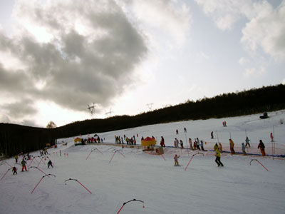 20110129-5.jpg