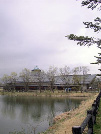 20110503-1.jpg