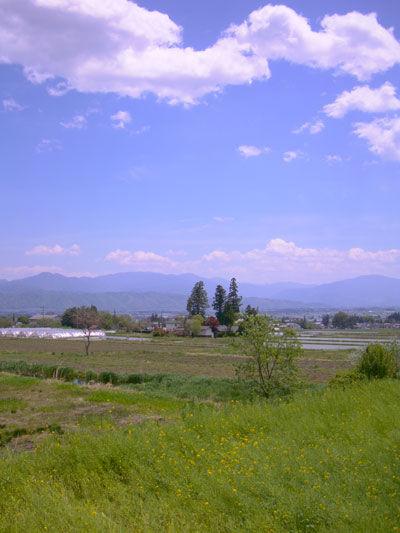20110518-6.jpg
