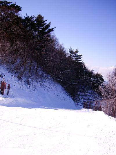 20120131-3.jpg