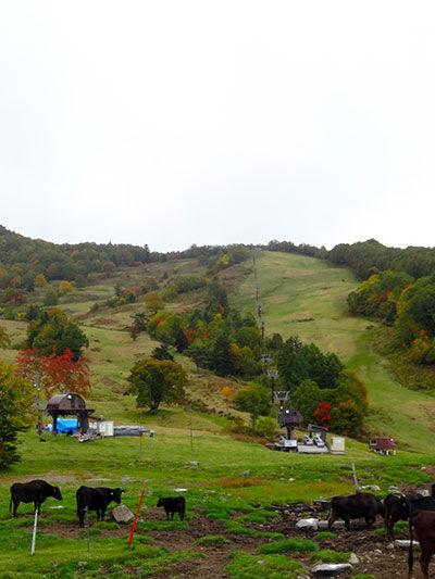 20131012-10.jpg