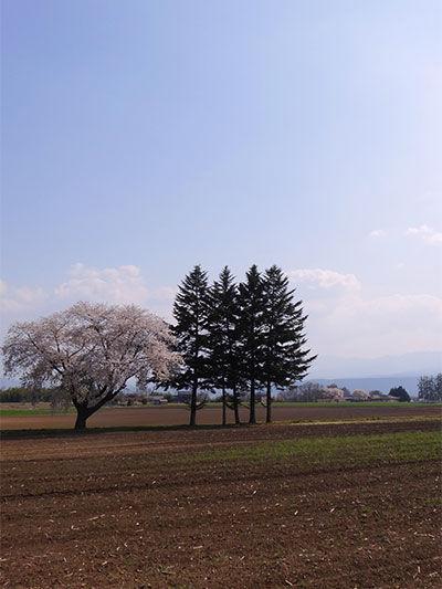 201404030-3.jpg