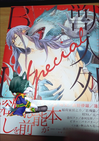 呪双剣終コンプ (3)