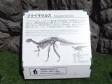 JR福井駅 フクイサウルス 説明