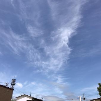 写真 2017-08-19 10 02 41