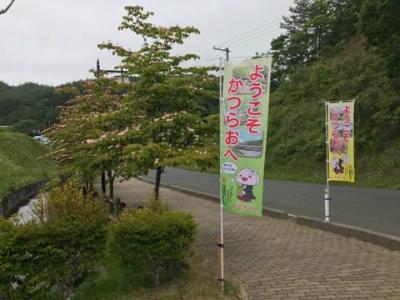 2017.6.18 TOKUさん 浪江・葛尾 5