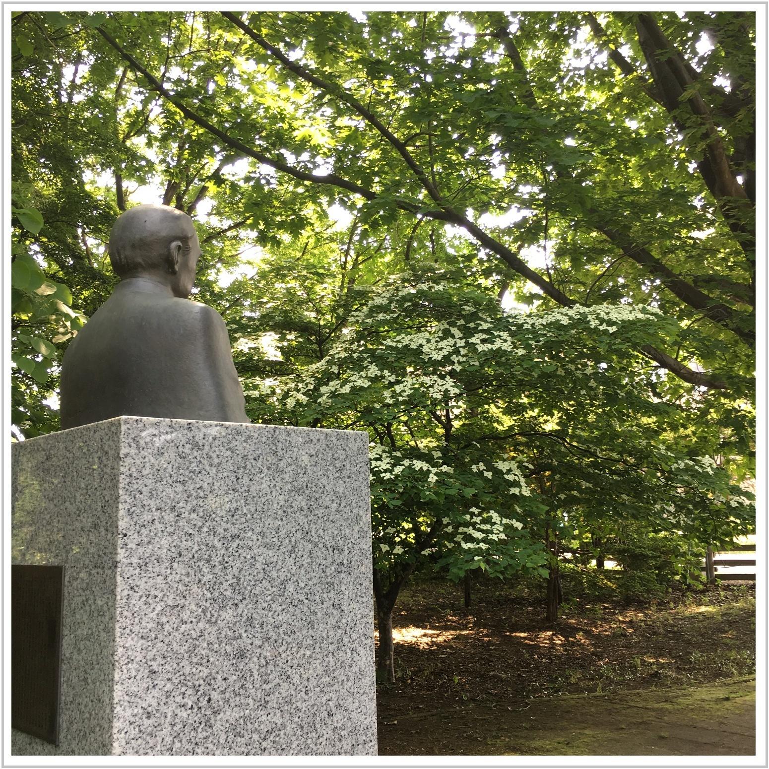 hanamizuki_1_621.jpg