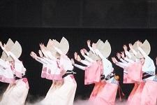 阿波踊り6