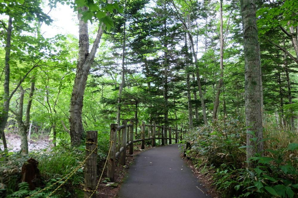 07-03 北海道 13