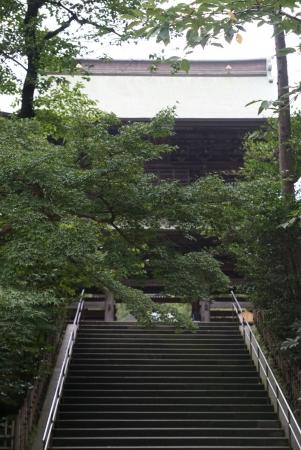 DSC01594鎌倉