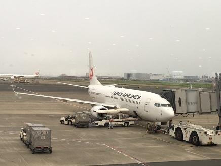 9012017 羽田空港JAL265S2