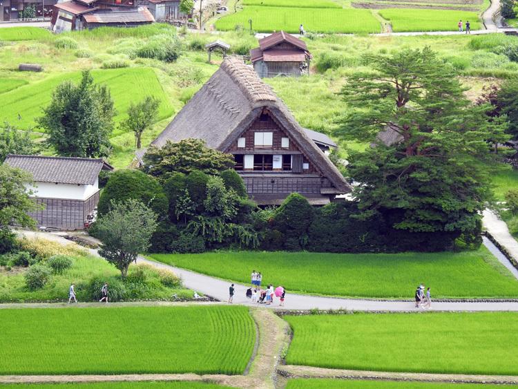 今年の夏休みは自然いっぱいの白川郷へ 3